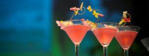 actus-cocktails-775x295